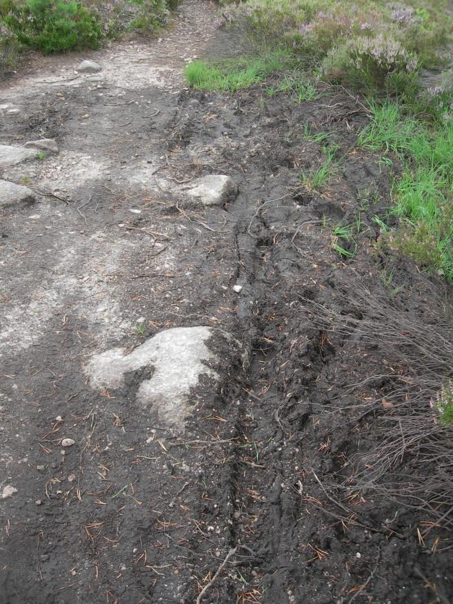 Erosion on the Lairig Ghru trail