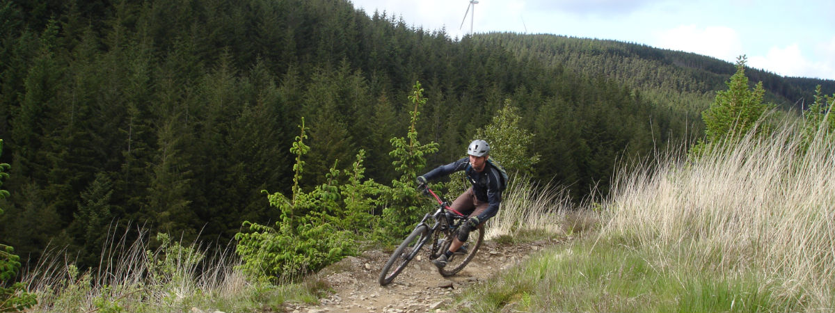 Mountain bike fundamentals